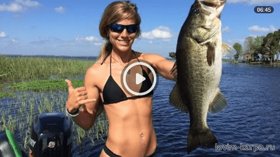 Darcie goes Florida Bassfishing and 70+mph with Blazer Boats Video