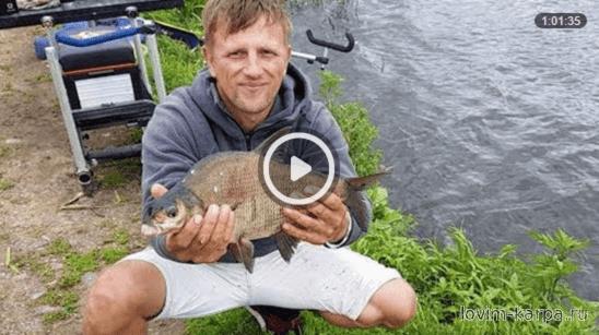 ловля леща на малой реке