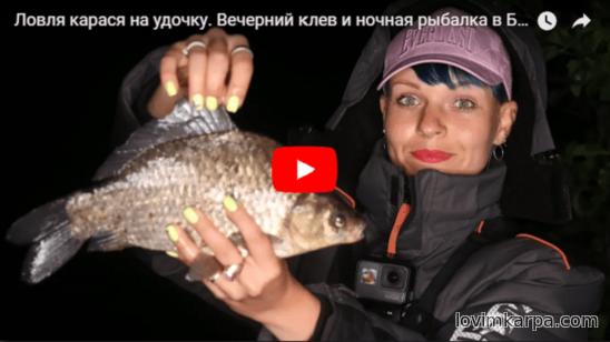 зимняя рыбалка клев