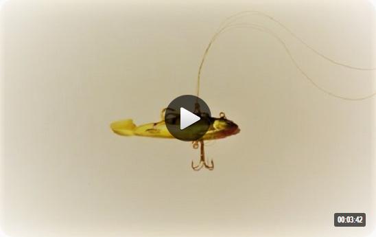 поводок для щуки при ловле на живца